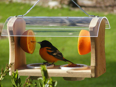 Free bird feeder woodworking plans vanity